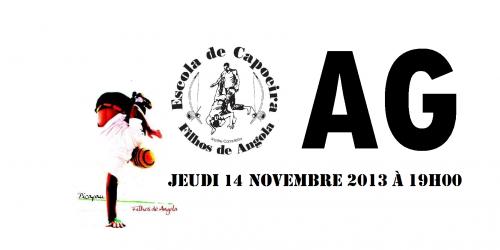 ag,filhos de angola,n'angola capoeira,le 108,orléans,association,capoeira