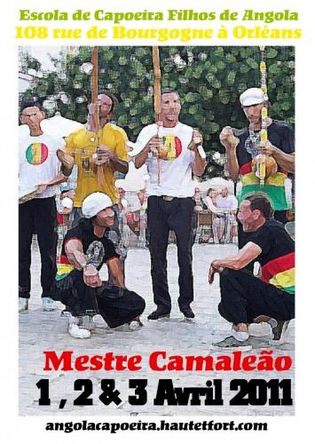 Mestre Camaleão,filhos de angola,stage capoeira