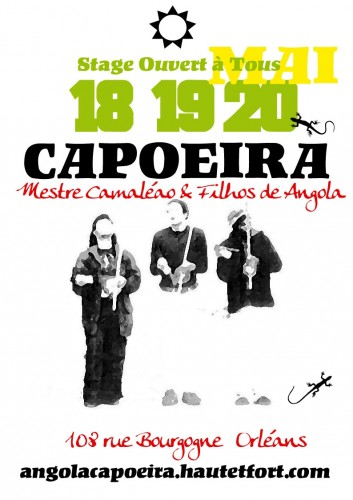 stage capoeira,Camaleão
