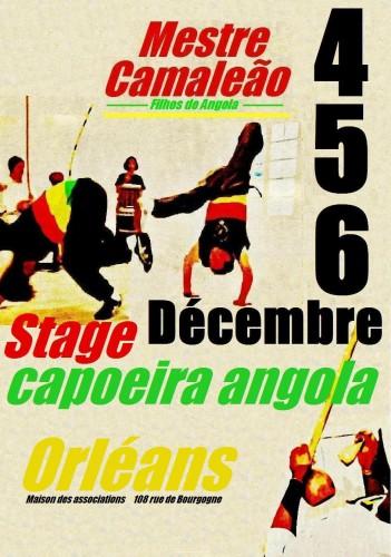 affiche2009 3 blog.JPG