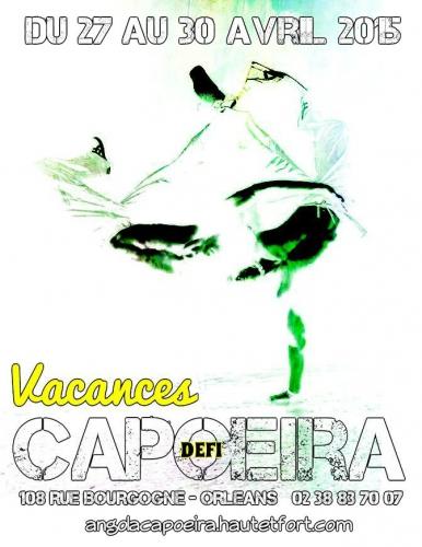 capoeira vacances,capoeira,orléans,picapau,filhos de angola