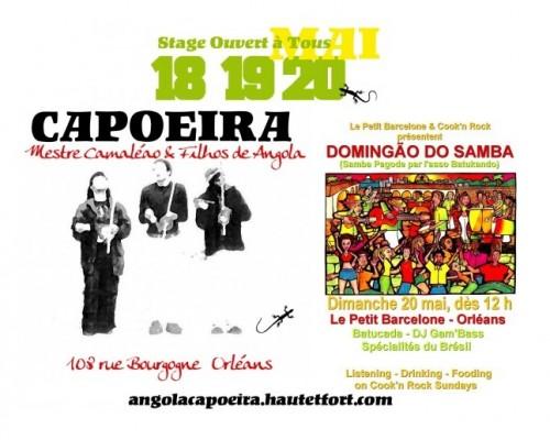 orleans,capoeira,brésil