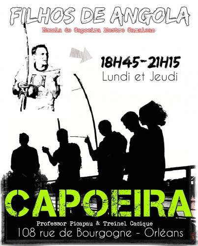capoeira orleans,orleans