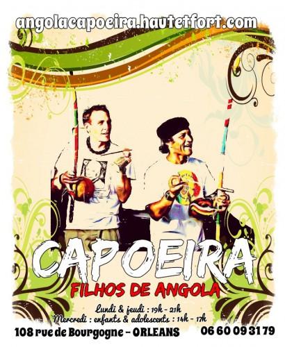 filhos de angola,capoeira,mestre camaléon