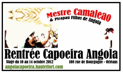 capoeira,orléans,108