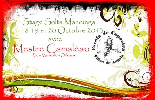 mestre camaléao,filhos de angola,capoeira,orléans,108,maison de bourgogne