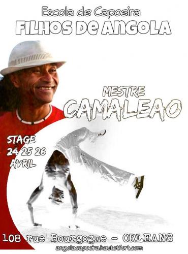 mestre camaleao,filhos de angola,orleans,picapau