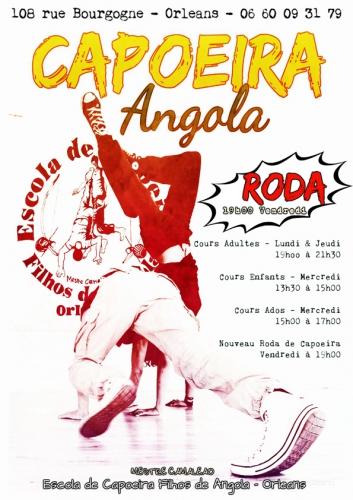 Filhos de Angola,orleans,capoeira,picapau,108 bourgogne,rentrée,camaléao,liberté