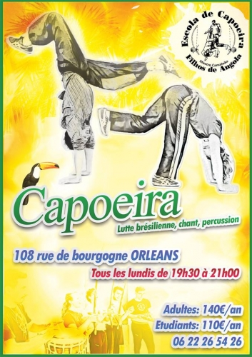 capoeira,orléans,orleans,capoeira angola,108 bourgogne,le 108,camaleao,filhos de angola,