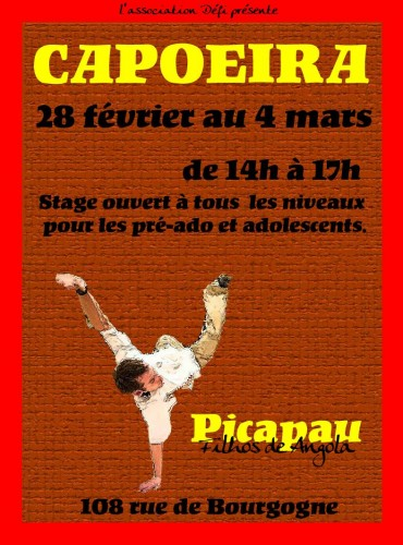 defi,picapau,stage capoeira