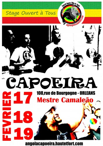 stage capoeira,camaleao,orleans,108
