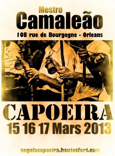 capoeira Mars 2013.jpg